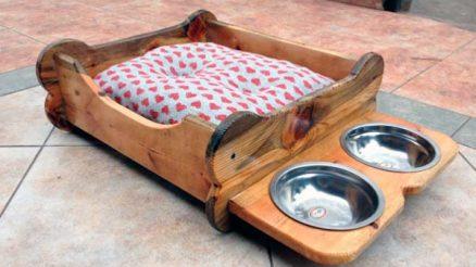 Camas y bebederos para perros